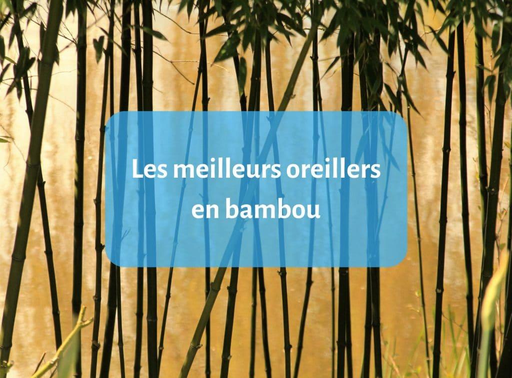 2 x mousse à mémoire Oreillers Bambou LUXE FERME TÊTE COU Support Orthopédique