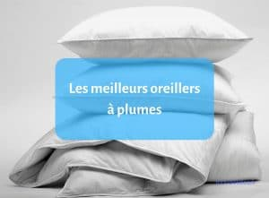 guide oreillers à plumes